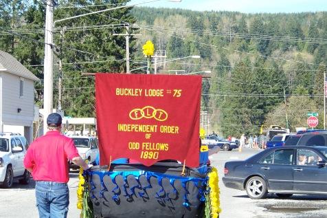 Buckley Daffodil - Banner1